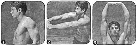 Комплекс для развития гибкости плеч